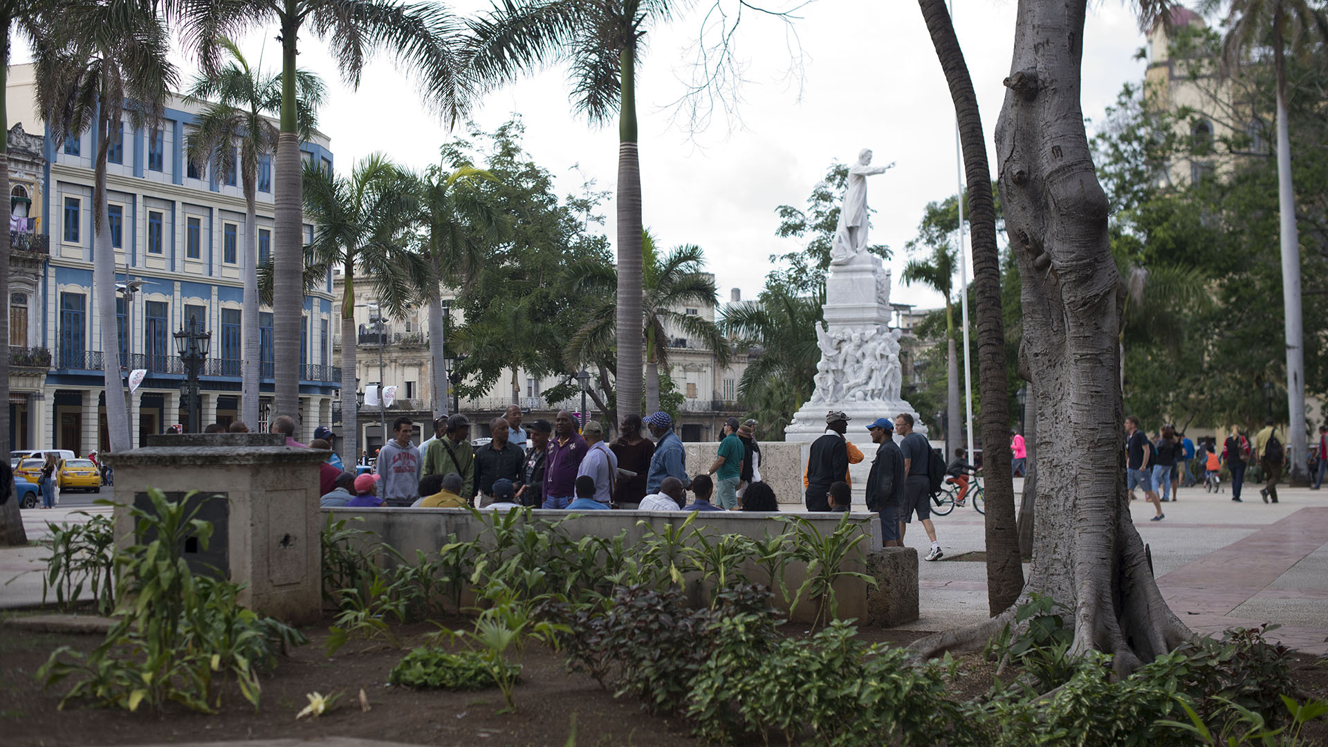 20180115 Havana 099 (1) (1) (1) (1) (1)