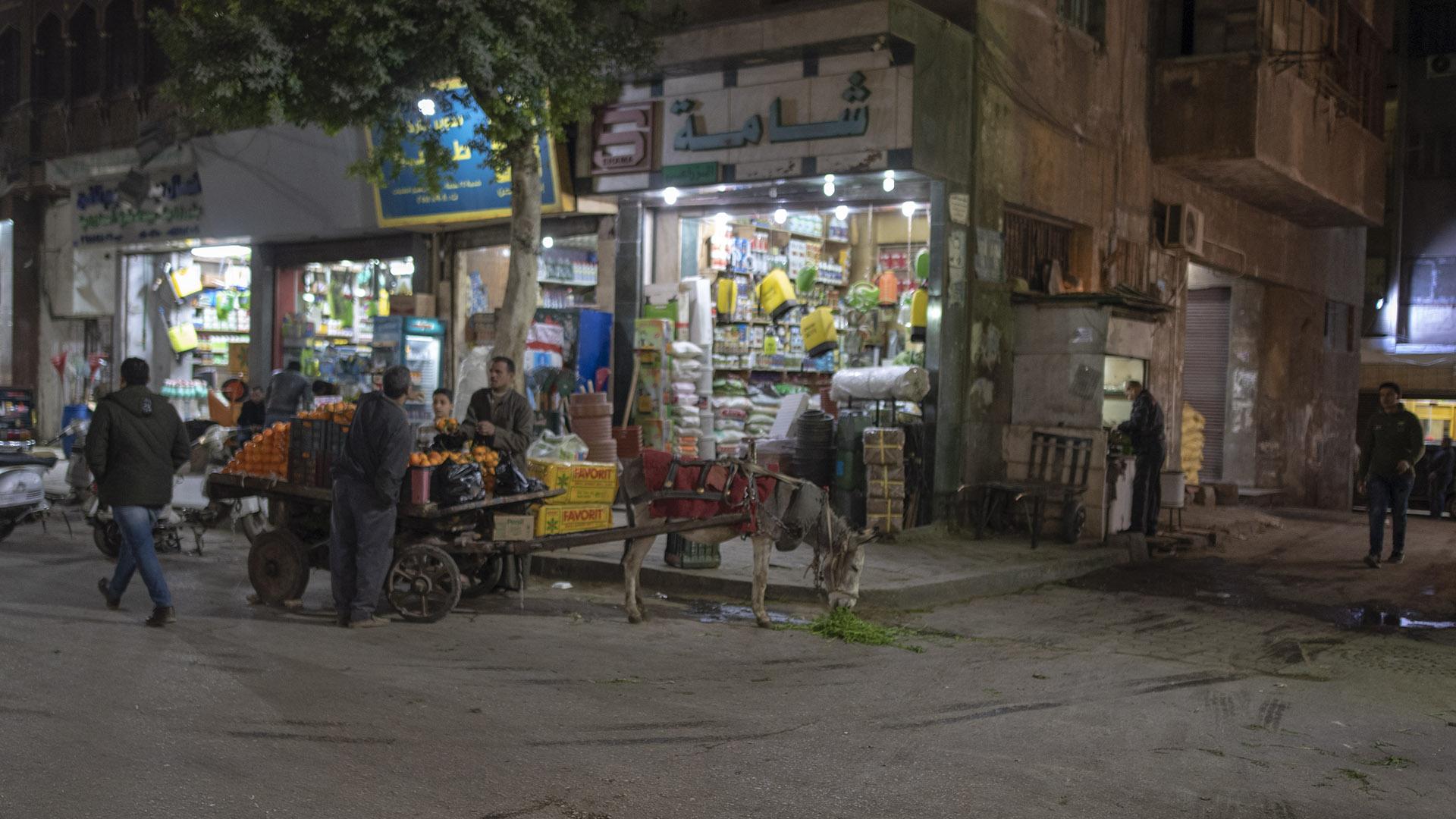 20190111 Cairo 313