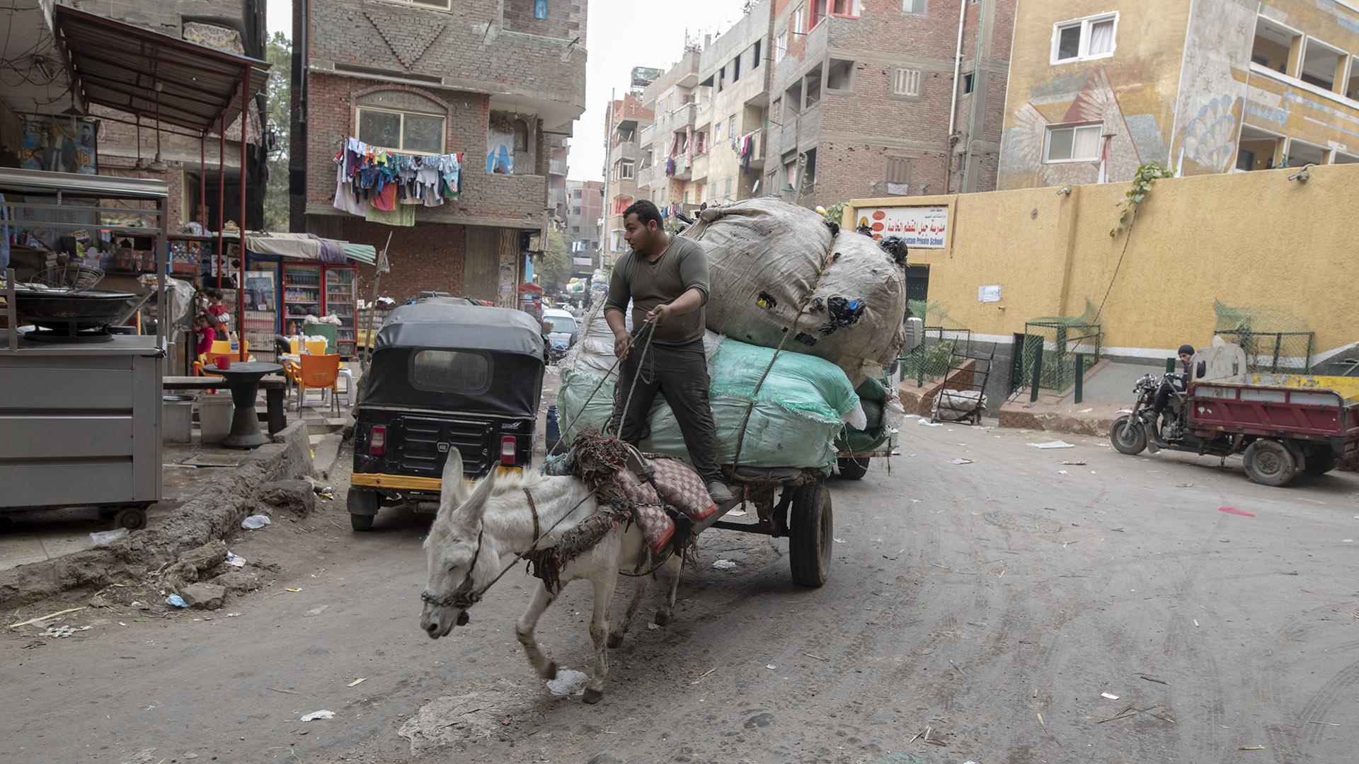 20190111 Cairo 553