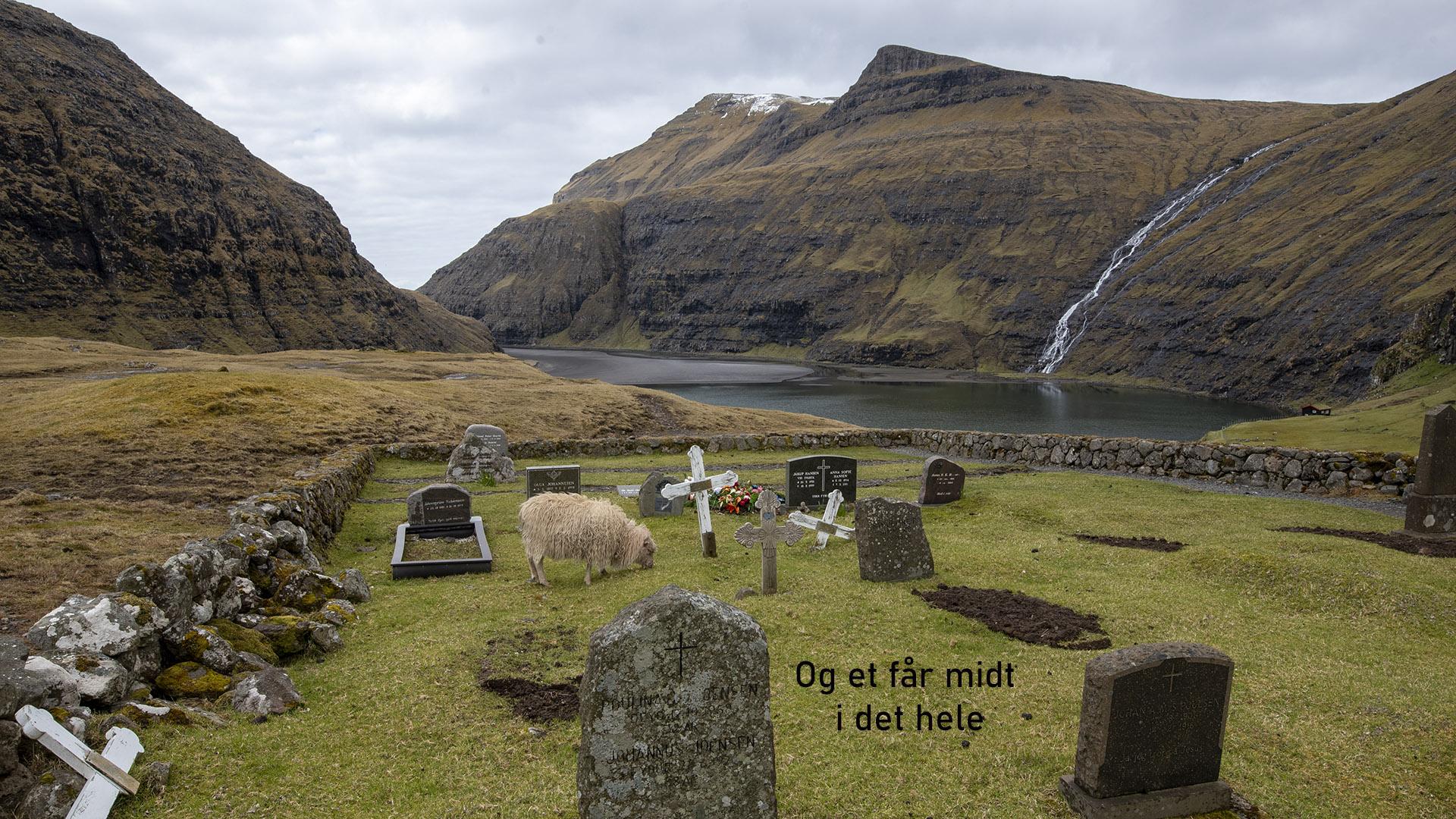 20210515 Færøern 136